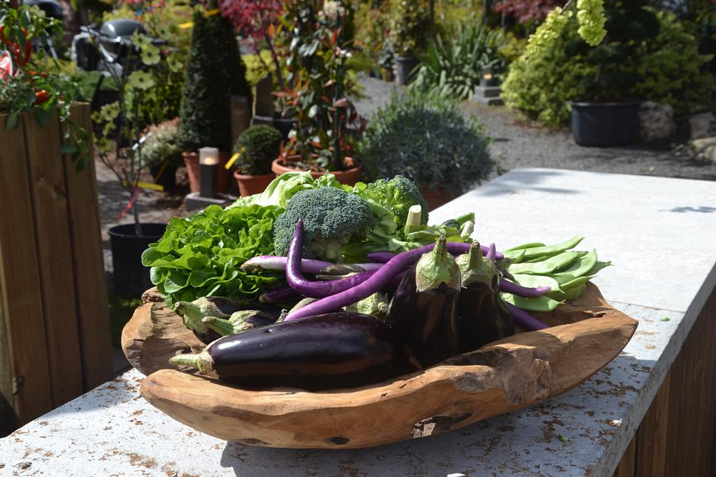 Dekorative Gemüseschale