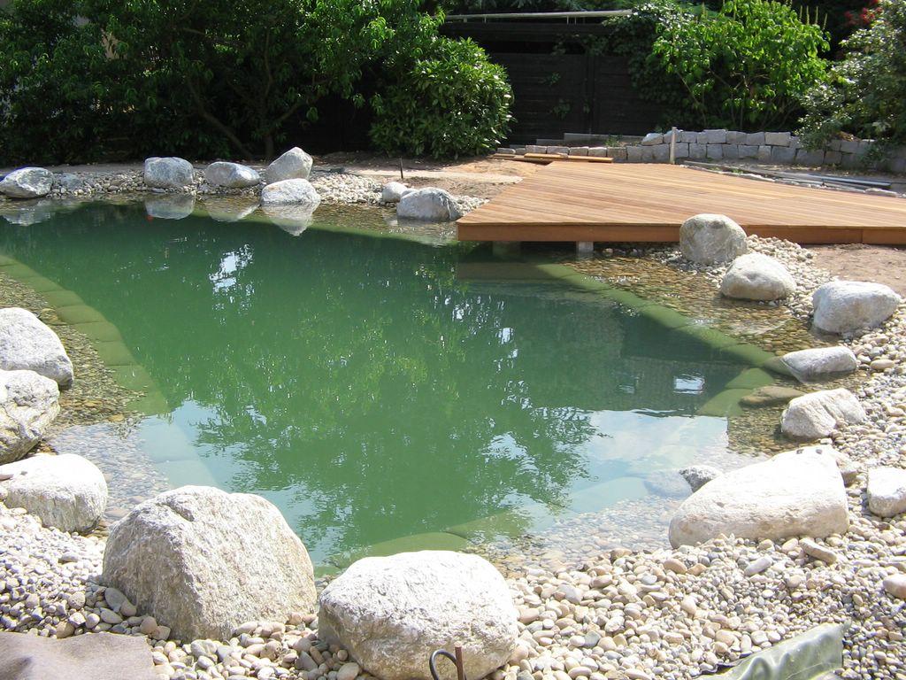 Naturnaher Schwimmteich