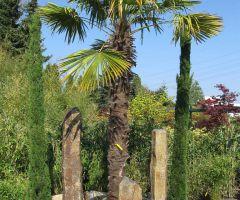 Kiesbeet mit Basaltsäulen in Kombination mit Palmen und Zypressen