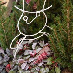 Weihnachtlich dekorierte Pflanzen